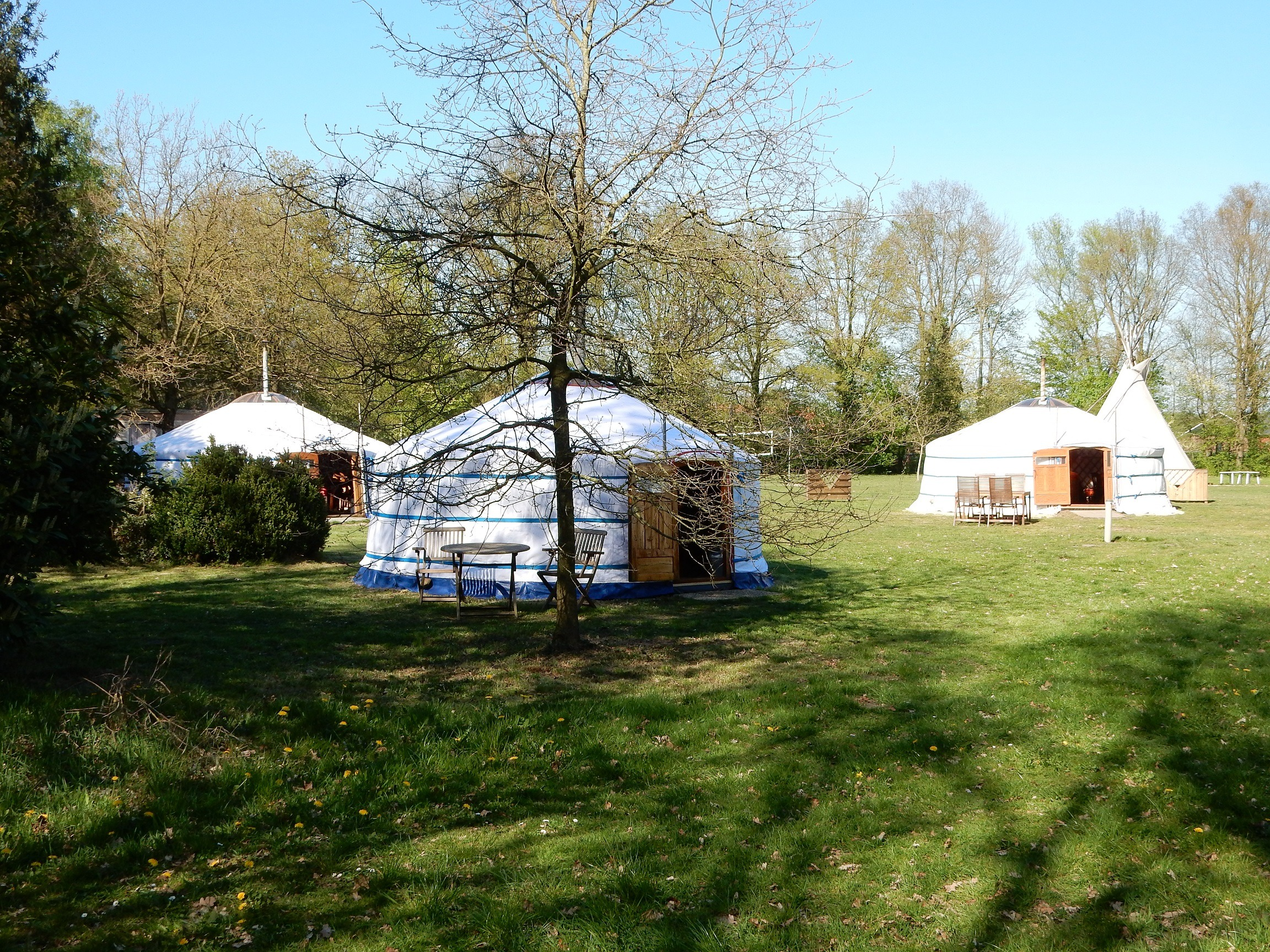 Yurts 4