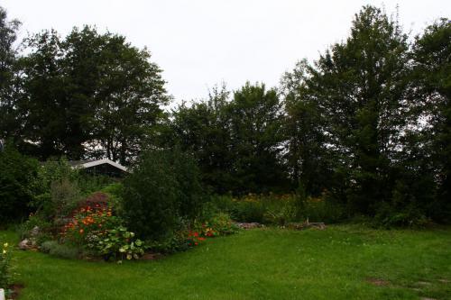 eigen tuin aug 17 (1)